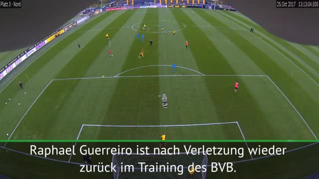 Bundesliga: Comebacker Guerreiro zaubert im Training