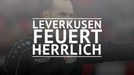 Leverkusen feuert Herrlich - Bosz übernimmt