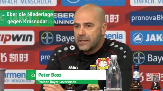 Peter Bosz über Krasnodar, Dortmund und Reus