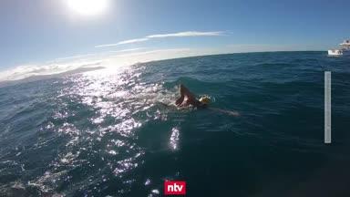 Extremsportler will nach Helgoland schwimmen
